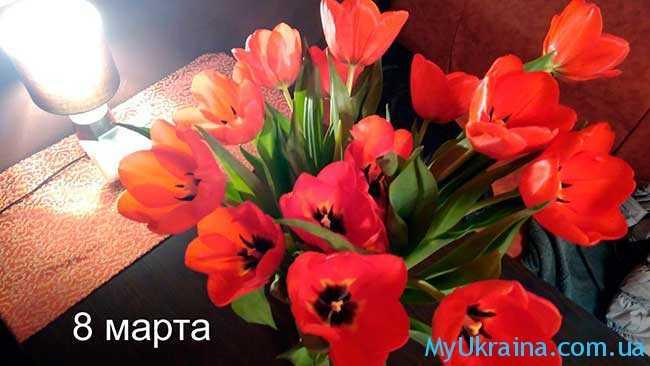 праздники в Украине в 2017 году