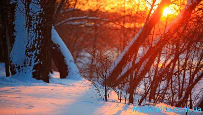 Картинки прогноз погоды зимой