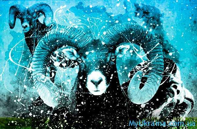 китайский гороскоп 2017 на год обезьяны