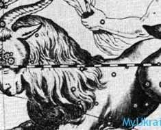 любовный гороскоп 2017 для мужчины Козерога