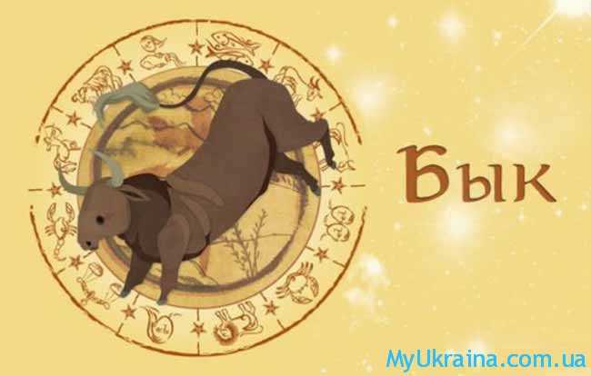 гороскоп мужчины Быка на 2019 год
