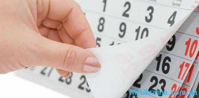 календарь учебных недель
