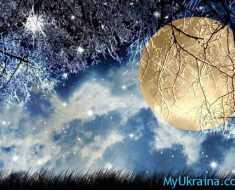 светит большая луна