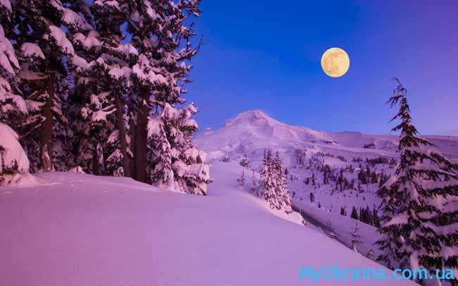 луна освещает снежок
