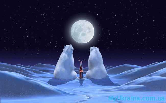 белые мишки смотрят на луну