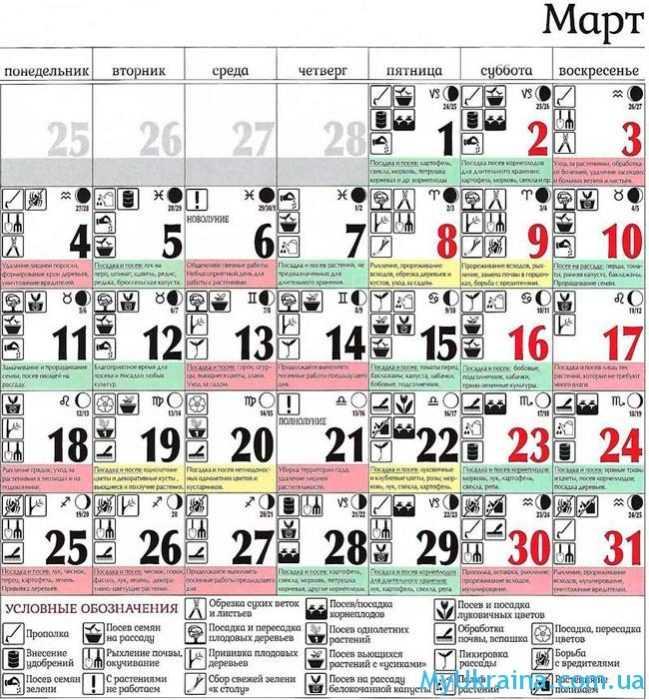 лунный календарь на март 2019 года