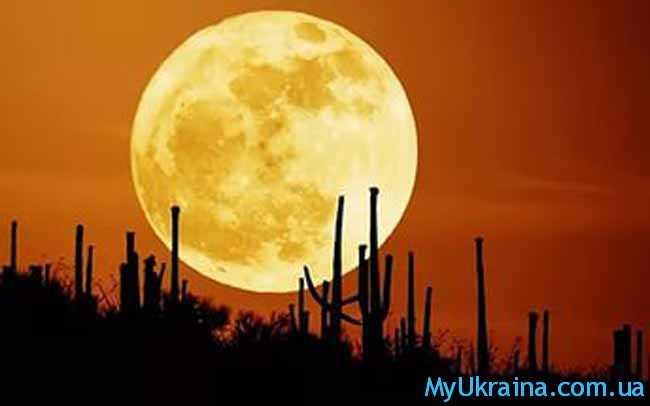 желтая луна