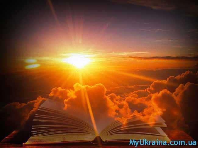 яркий свет и книга