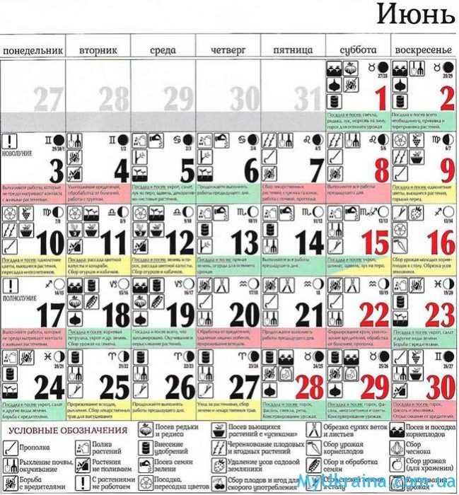 посевной календарь на июнь