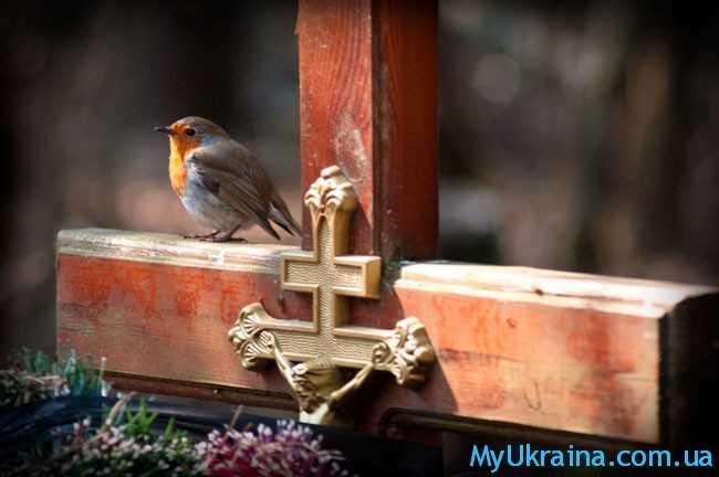 птичка на кресте