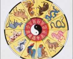Знаки зодиака по китайскому календарю