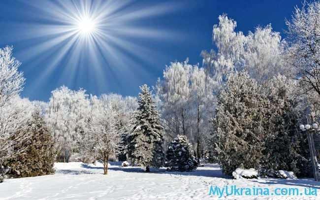 зимняя пора