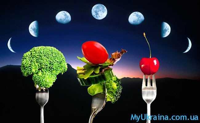 луна, овощи и фрукты