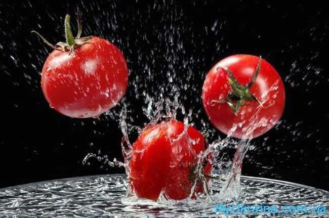 красивые помидорчики