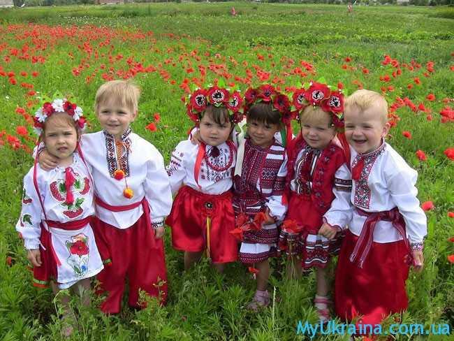 детки на маковом поле