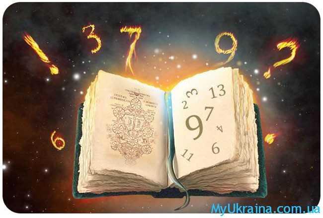 книга и цифры