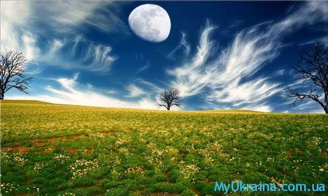 красивейшее поле и луна