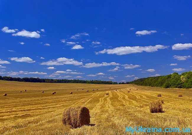 Август - это завершающий этап летнего периода