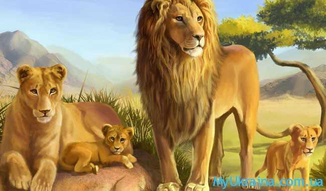 Общий Гороскоп на 2018 год для Льва
