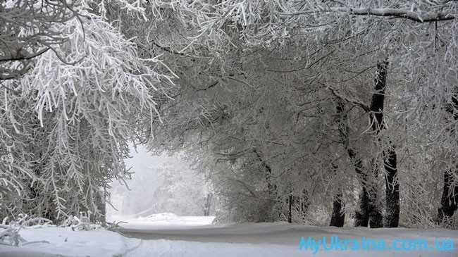 Чем сможет порадовать или удивить зима в 2018 году?