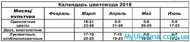 таблица-5