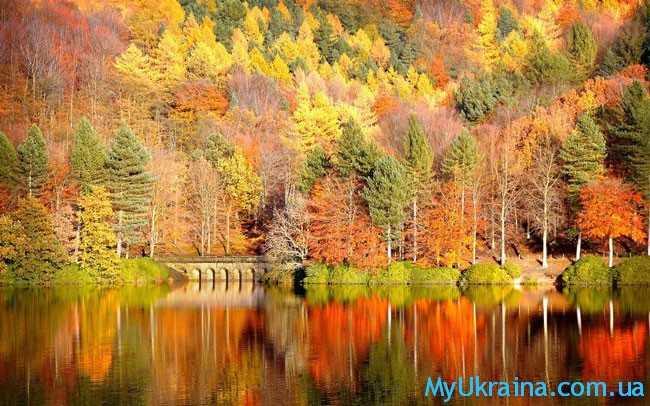 """Сентябрь является началом """"золотого"""" осеннего периода"""