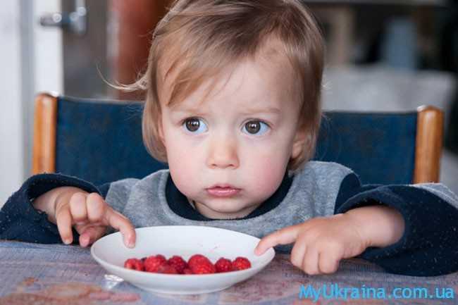 малыш и ягодки