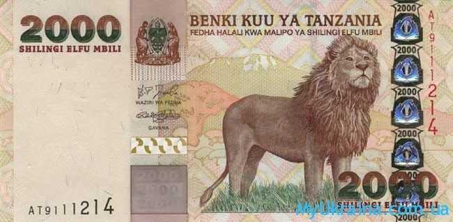 Лев и деньги
