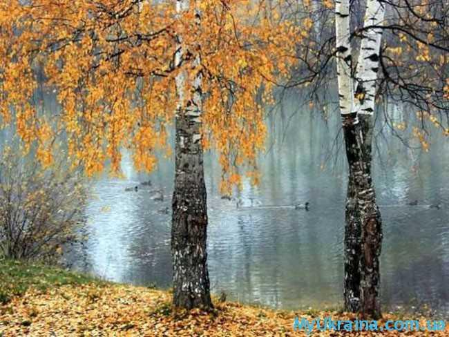 """октябрь был назван """"Листопадом"""""""