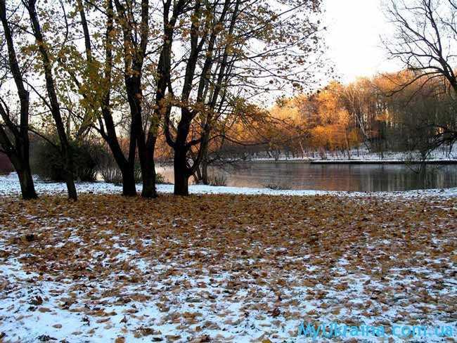Ноябрь является завершающим этапом осеннего сезона