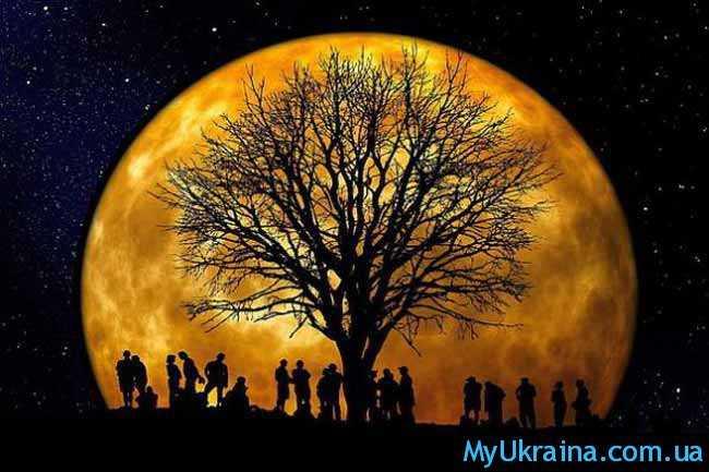 полная ночная луна