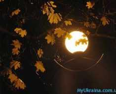 ноябрьская луна