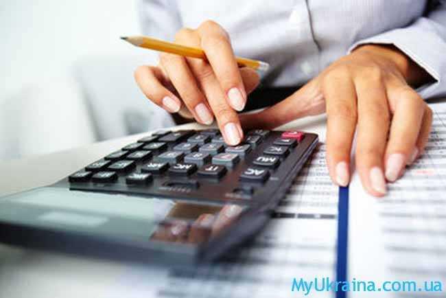 предоставлять в налоговые органы соответствующие декларации и отчеты