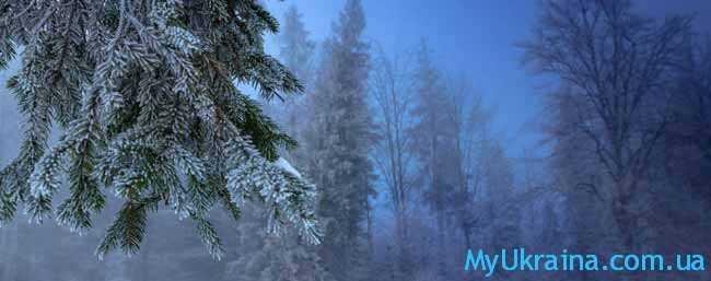 по прогнозу декабрь порадовал граждан «Незалежної» комфортной зимней погодой