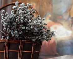 христиане встречают Вербное воскресенье