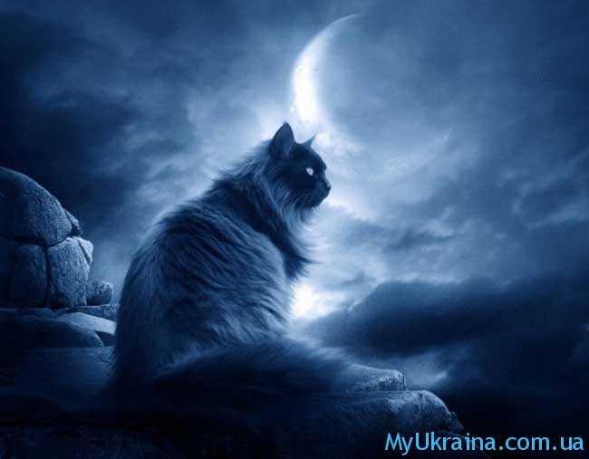 правление убывающей фазы ночного светила