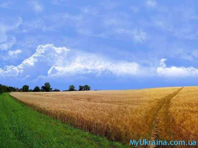 земледельцы и землевладельцы