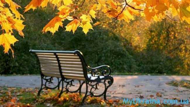 первый месяц осени в Украине станет теплым и умеренно дождливым