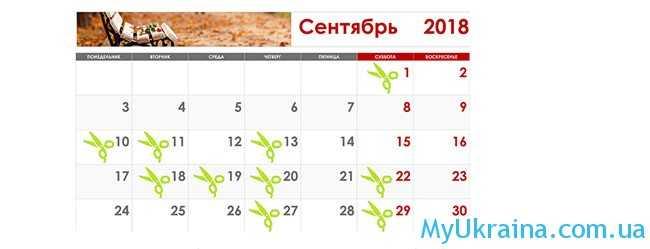Благоприятные дни в лунном календаре стрижек волос в сентябре 2018 года в Украине
