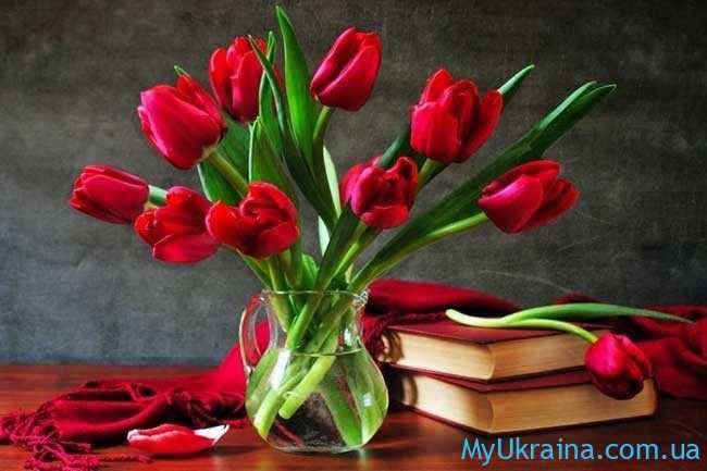 Восьмое марта – праздник всех женщин